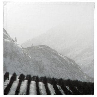 Keremeos area orchard in winter napkin