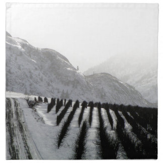 Keremeos orchard in winter on the benches napkin