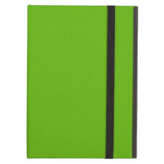 Kermit Green colored iPad Air Cover
