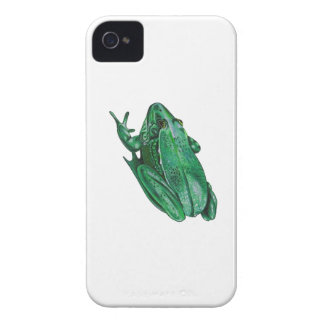 Kermit's Adenture iPhone 4 Cases