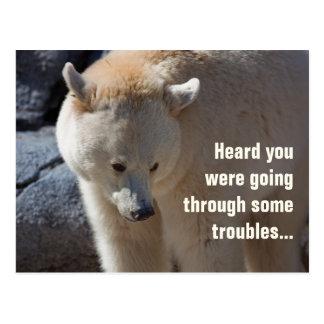 Kermode Bear•Troubles Postcard