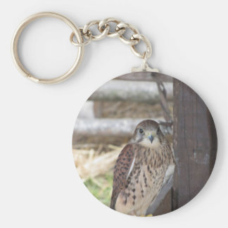 Kestrel perched on a fence post basic round button key ring