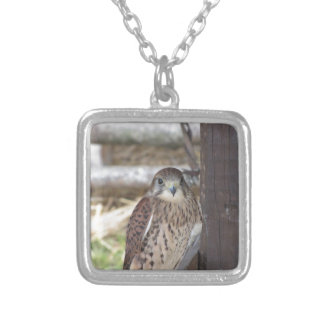 Kestrel perched on a fence post silver plated necklace