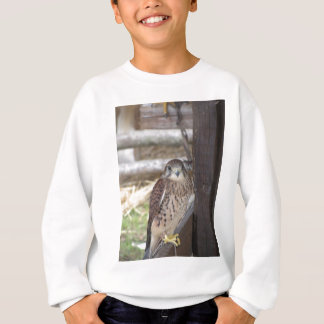 Kestrel perched on a fence post sweatshirt
