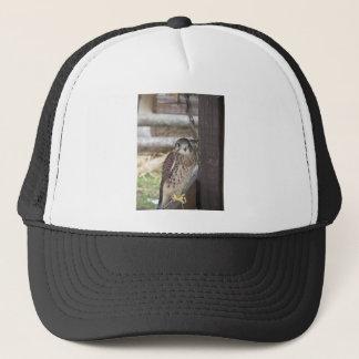 Kestrel perched on a fence post trucker hat