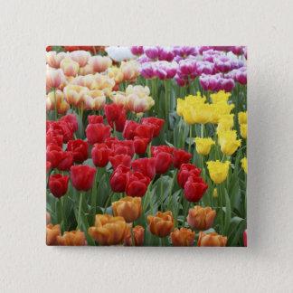 Keukenhof Gardens, Holland, specializes in 2 15 Cm Square Badge
