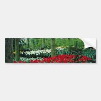 Keukenhof Gardens, Lisse, Netherlands  flowers Bumper Stickers