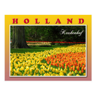 Keukenhof, Lisse, Netherlands Postcard