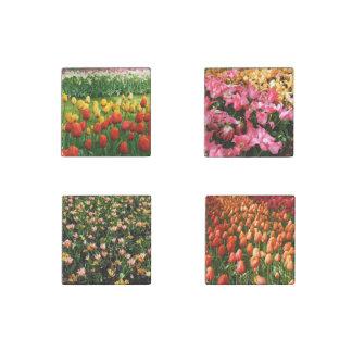 Keukenhof Tulips, Marble Magnet Set