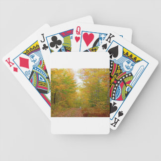 Kevin The Dalmatian Bicycle Playing Cards