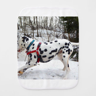 Kevin The Dalmatian Burp Cloth