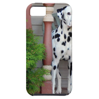 Kevin the Dalmatian Case For The iPhone 5