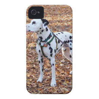 Kevin The Dalmatian Case-Mate iPhone 4 Case