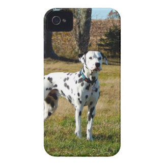 Kevin the Dalmatian iPhone 4 Cases