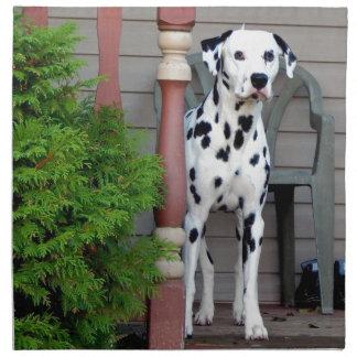 Kevin the Dalmatian Napkin