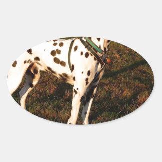 Kevin the Dalmatian Oval Sticker