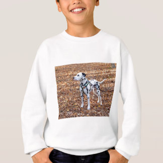 Kevin The Dalmatian Sweatshirt