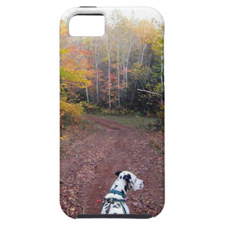 Kevin the Dalmatian Tough iPhone 5 Case