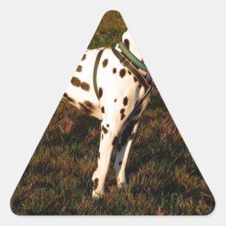 Kevin the Dalmatian Triangle Sticker