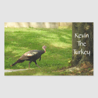 Kevin The Turkey - Old Wethersfield , CT Rectangular Sticker