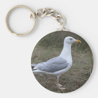 key chains, beautiful, images, birds, animals key ring