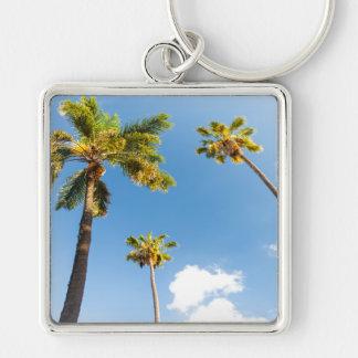 Key-ring Palm trees