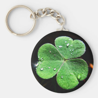 Key supporter clover sheet with water drops key chains