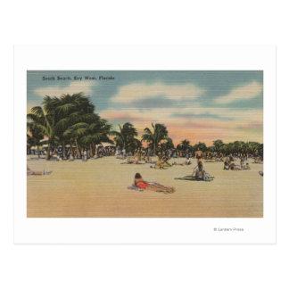 Key West, FL - View of South Beath w/ Sunbathers Postcard