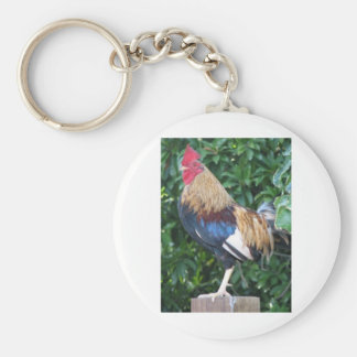 Key West Rooster Key Chains