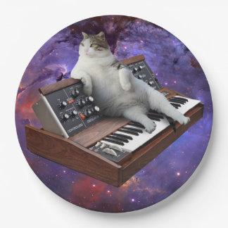 keyboard cat - cat memes - crazy cat 9 inch paper plate