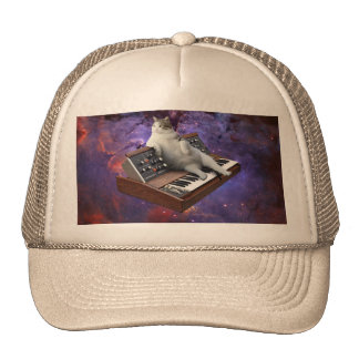 keyboard cat - cat memes - crazy cat cap