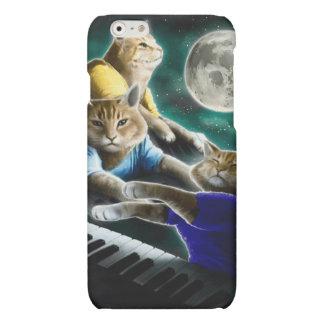 keyboard cat - cat music - cat memes