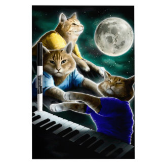 keyboard cat - cat music - cat memes dry erase board
