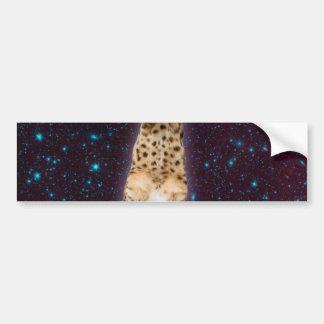 keyboard cat - funny cats  - cat lovers bumper sticker