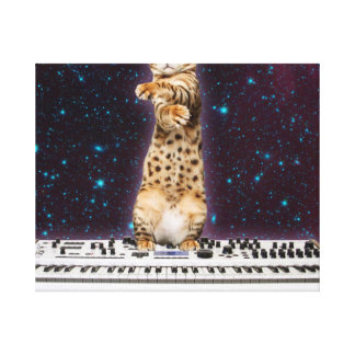 keyboard cat - funny cats  - cat lovers canvas print