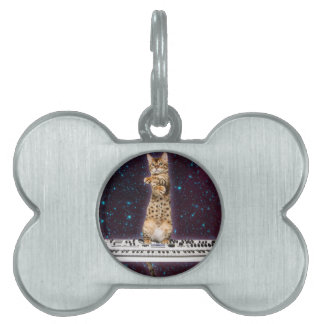 keyboard cat - funny cats  - cat lovers pet name tag