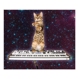 keyboard cat - funny cats  - cat lovers photo print