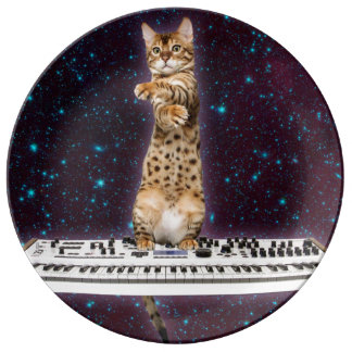 keyboard cat - funny cats  - cat lovers plate