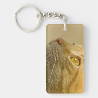 Keychain with a red cat.