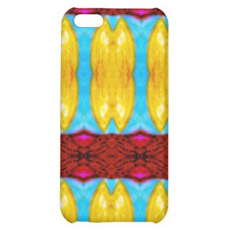 """Khajane"" meaning ""Treasures"" products iPhone 5C Covers"