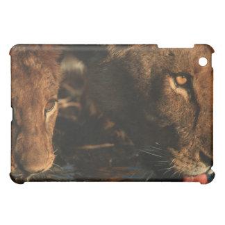Khwai River, Moremi Wildlife Reserve, Botswana iPad Mini Cases