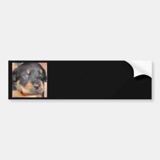 Kia Ora ...I'll be Your Dog Car Bumper Sticker