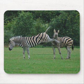 Kicking zebra mousepad