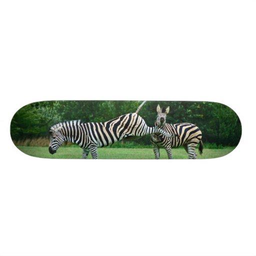 Kicking Zebra Skateboard