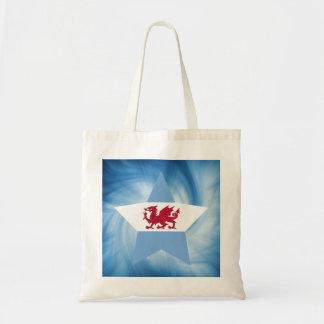 Kid Friendly Patagonia Flag Star Budget Tote Bag
