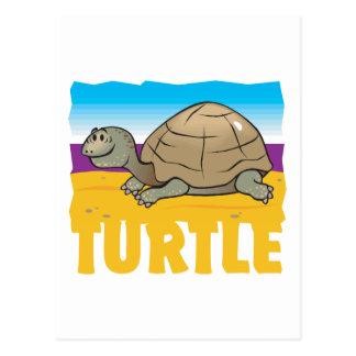 Kid Friendly Turtle Postcard