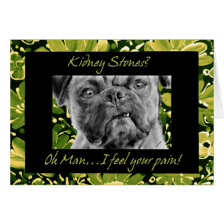 Kidney Stones Get Well Funny Pug Dog Card
