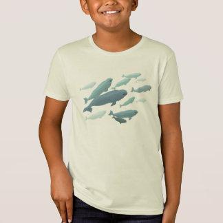 Kid's Beluga Whale T-Shirt Organic Whale Art Shirt