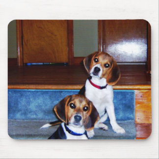 Kids on Stairs Mouse Pad