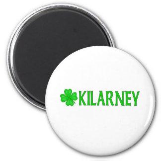 Kilarney, Ireland Fridge Magnet
